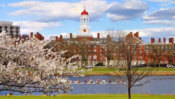 Harvard University vs MIT