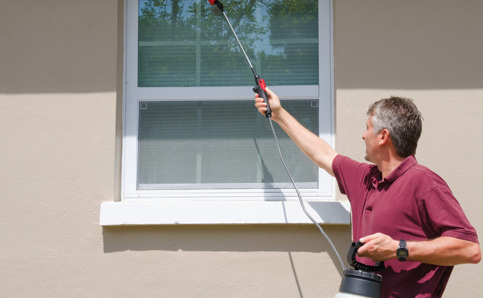 What Are The Best Professional Pest-Control Techniques?